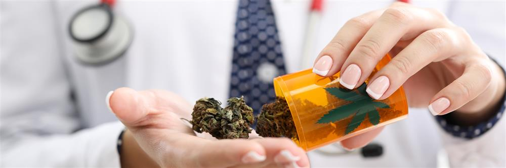The Ins and Outs of Cannabis Insurance